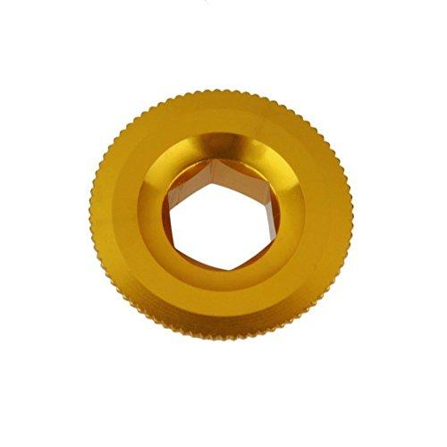 BARGAIN HOUSE Bike Crank Arm Bolt Chain Ring Crankset Fixing Bolt Screw Nuts Gold