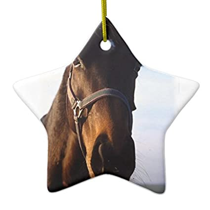 christmas gifts sweet thoroughbred horse ornament star xmas decor ornament yard decorations - Christmas Horse Yard Decorations