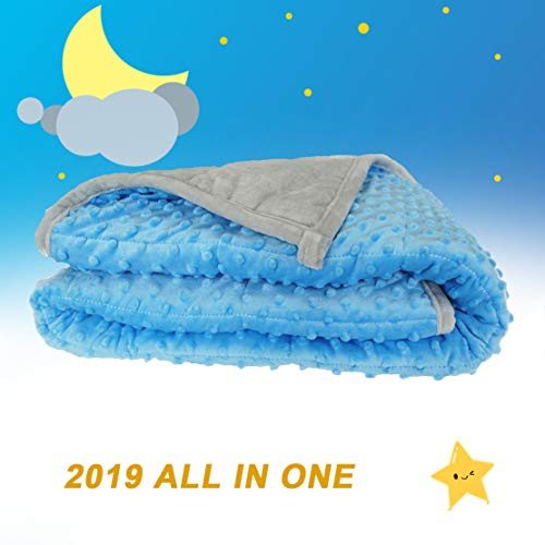 Oileus Weighted Blanket for Kids 2.0 Version Newest One Piece Design Minky Dot-40