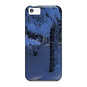 New Style Eriklcoeman Beautiful Magical Forest In Winter Premium Tpu Cover Case For Iphone 5c