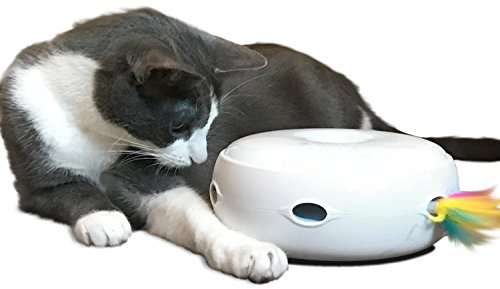 Help your cat lose weight - PetFusion AMBUSH INTERACTIVE Cat Toy with electronic rotating feather. (Smart modes, nighttime light, batteries included)