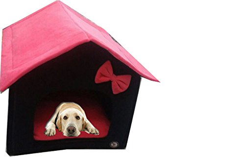 Douge Couture Dog Lovers Foldable Designer Velvet Fabric Dog (B0796QGT14) Amazon Price History, Amazon Price Tracker