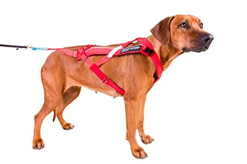 Image of Non-stop dogwear Professional Combined Dog Harness Suitable for Canicross, Bikejoring, Skijöring, Pulka (7)