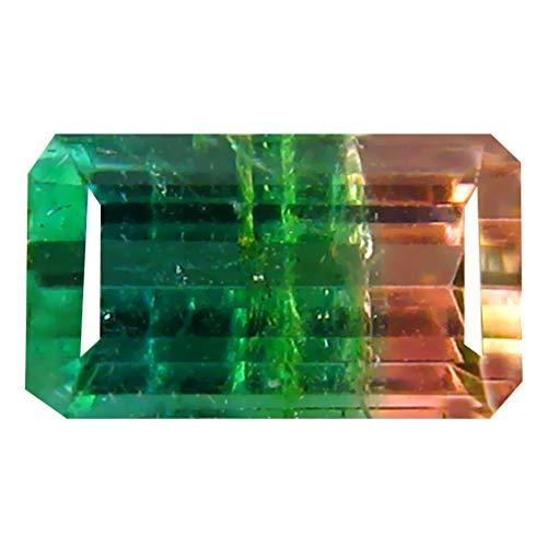 0.93 ct OCTAGON SHAPE (7 x 4 mm) BRAZILIAN BI-COLOR WATERMELON TOURMALINE NATURAL LOOSE - Color Tourmaline Gem Bi