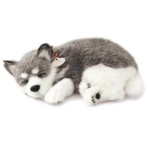 Perfect Petzzz Alaskan Husky [並行輸入品] B01K1W4D4A