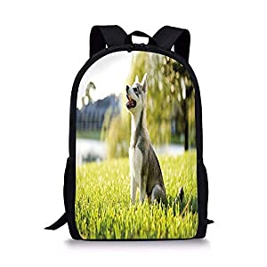 School Bags Alaskan Malamute,Klee Kai Puppy Sitting on Grass Looking Up Friendly Young Cute Animal Decorative,Multicolor for Boys&Girls Mens Sport Daypack 3