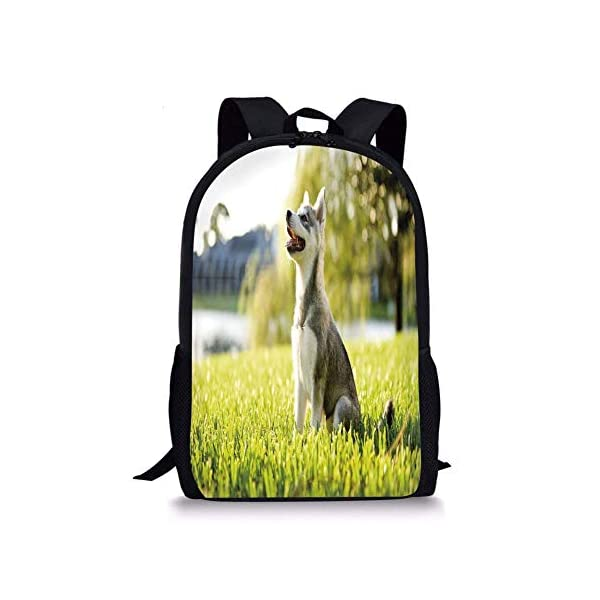 School Bags Alaskan Malamute,Klee Kai Puppy Sitting on Grass Looking Up Friendly Young Cute Animal Decorative,Multicolor for Boys&Girls Mens Sport Daypack 1
