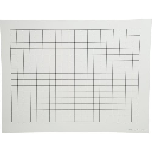 (Constructive Playthings TNP-25 Magnetic Write and Wipe Graphing Chart (17