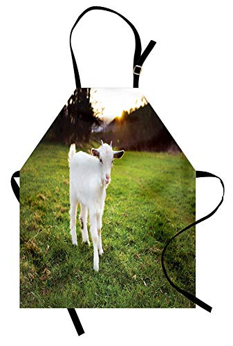 T&H Home Goat Apron, Baby Goat Grazing in The Meadows Sundown Rustic Idyllic Blurred Background, Unisex Kitchen Bib Apron Adjustable for Kids Adults Cooking Baking Gardening, Fern Green White Brown ()