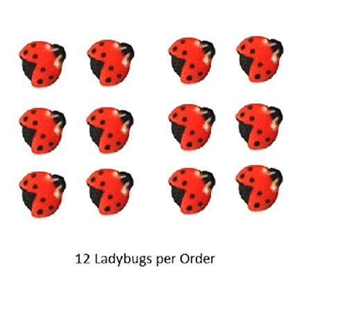 Ladybug Cake Toppers (Oasis Supply, Edible Fun Shapes | Sugar Hand Painted Cake, Cupcake Toppers | 3/4