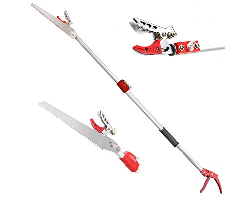 DCM 6.5-13 Feet Telescoping Cut and Hold Long Reach Bypass Garden Pruner, Pole Saw, Extendable saw, Fruit Picker Harvester, Gardening Shear (4 Meter) by DCM