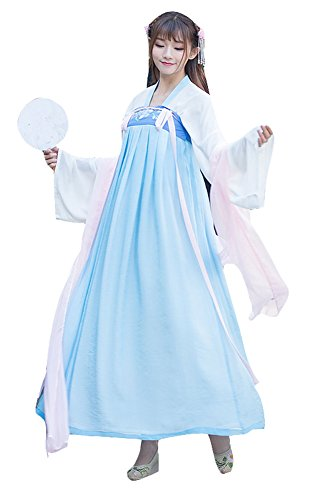 Plaid&Plain Women's Halloween Cosplay Tang Dynasty Hanfu Embroidered Chinese Dress Blue M - Chinese Fancy Dress Ideas