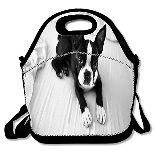 Boston Terrier Rescue Neoprene Lunch Bag Tote Reusable Insulated School Picnic Carrying Lunchbox Container Organizer For Men,Women,Adults,Kids,Girls, Boys