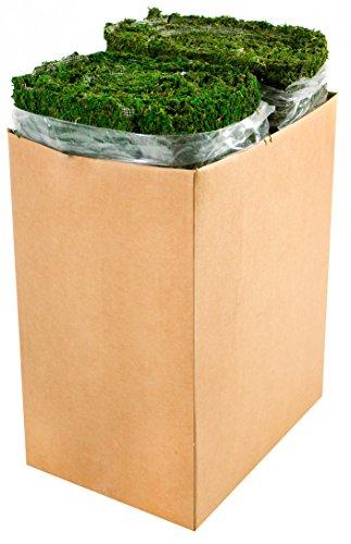 SuperMoss (22432) InstantGreen Moss Mat, Fresh Green, 1.5ft x 48ft by Super Moss