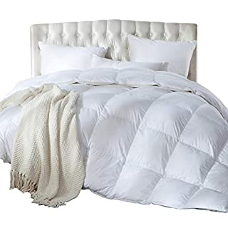 Luxurious Full / Queen Size Siberian Goose Down Comforter, Duvet Insert, 1200 Thread Count 100% Egyptian Cotton, Hypoallergenic, 60 oz Fill Weight, 1200TC, White Solid