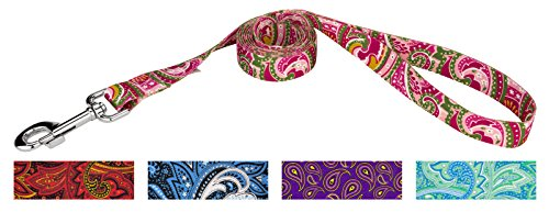 Country Brook Design 1 Inch Pink Paisley Leash - 6 feet