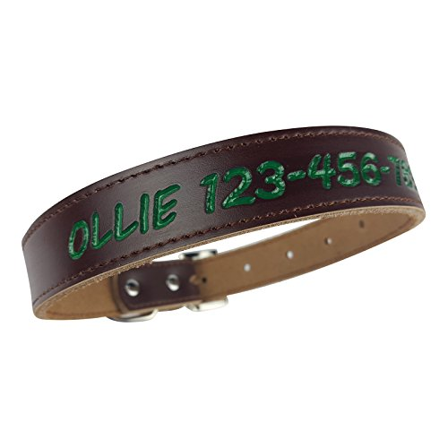 Personalized Dog Collar - Custom Leather with 4 Bold Text Styles and 8 Text Colors, Medium (14-18 Inch Neck) Brown (Ducks Embroidered Leather)