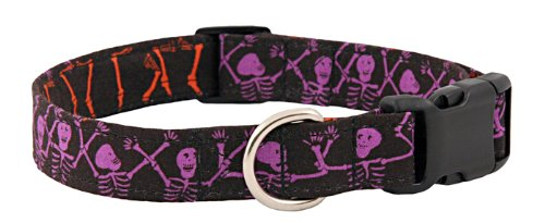 Country Brook Design Skeleton Party Purple Designer Dog Collar-S -