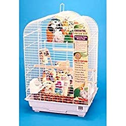 Penn Plax Cockatiel Bird Cage Starter Kit, 27 Inch Cage Scallop Design with Toy, Cuttlebone, Treat, and Wood Perch