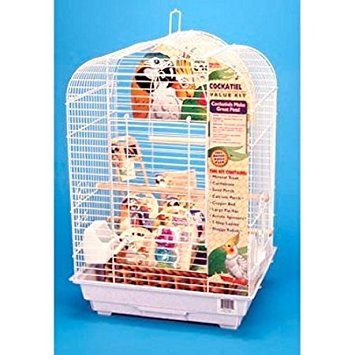 Penn Plax Cockatiel Bird Cage Starter Kit, 27 Inch Cage Scallop Design with Toy, Cuttlebone, Treat, and Wood Perch (Starter Bird Cage)