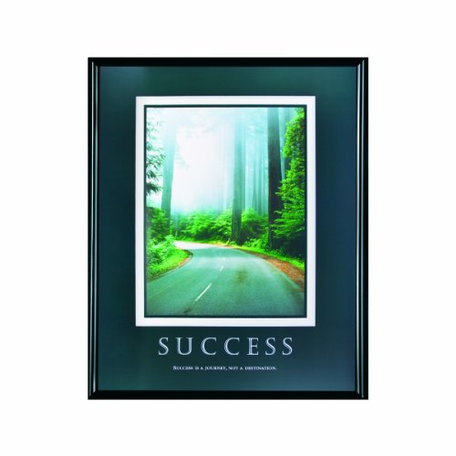 ADVANTUS Framed Motivational Print, Success, 24 x 30 Inches, Black Frame (78004)