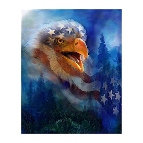 Handser 5D DIY Diamond Painting, Crystal Eagle American Flag, Cross Stitch Embroidery Animals Full Round Drill Diamond Pattern, Home Decoration (Picture Size:30x35cm) ()