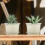 Plant Pots Indoor, ZOUTOG 6 inch Plastic Planters