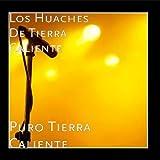 Puro Tierra Caliente by Los Huaches De Tierra Caliente