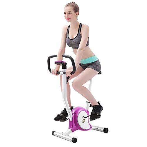 18' Magnetic Display Bar - GraceShop Solid Health Stationary Fitness Cardio Upright Exercise Bike