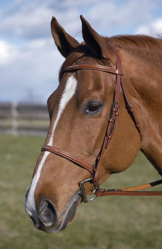 English Tack Henri de Rivel Fancy raised Bridle Horse Havana