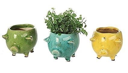 Amazon set of 3 terra cotta pig planter flower pots green blue set of 3 terra cotta pig planter flower pots green blue yellow distressed cracked finish mightylinksfo