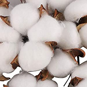 Yoodelife Natural Cotton Bolls Balls Artificial White Cotton Stems Floral Picks for Wreath Home Decor Craft, 10 Pcs 3