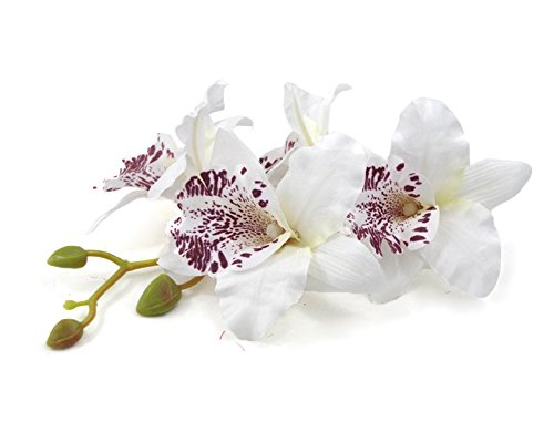 DreamLily Hawaiian Orchid Flower Hair Clip Hair pins for Beach Party BC14 (1PCS-White)