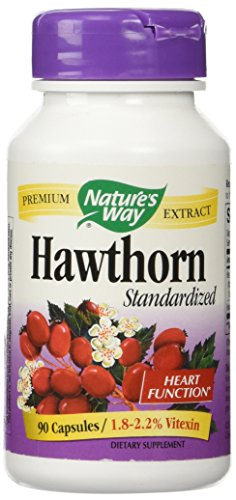 Hawthorn Standardized Extract 90 Capsule