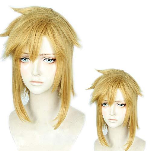 내열 코스프레 가발 두번째 성 링크 젤다의 전설 브레스 오브 더 와일드 The Legend of Zelda : Breath of the Wild 의상 파티 이벤트 가장 wig
