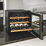 Appliances : Wine Enthusiast 272 02 13W Stainless Steel/Wood Shelves Silent 12-Bottle Wine Cooler, Stainless