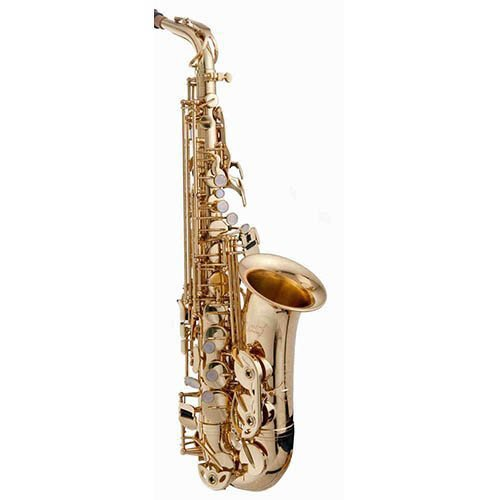 Charlie Parker Elite Series Saxophone Bundle Includes RS Berkeley Elite Series Alto Saxophone w/Bonus Charlie Parker Care & Cleaning Pack+ Black Music Stand