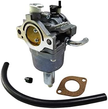Carburador para Briggs & Stratton 591731 reemplaza 796109 ...