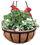 Cheap (12) ea Border Concepts 72188 16″, Black, Wrought Iron, Traditional, Hanging Baskets