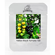 Rare Yellow Black Dwarf Cherry Tomato Hybrid Seeds, Professional Pack, 100 Seeds / Pack, Bonsai Balcony Sweet Tomato #NF954
