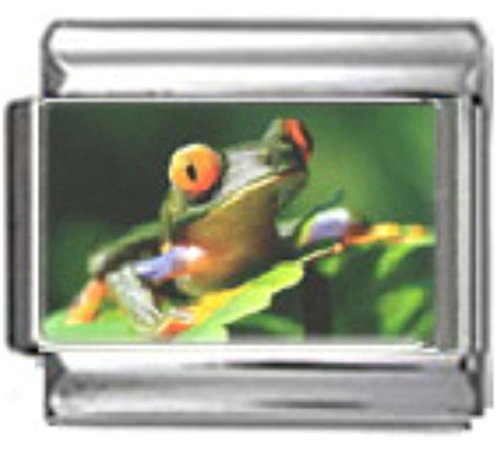 (Stylysh Charms Frog Green Amphibian Photo Italian 9mm Link AN038)