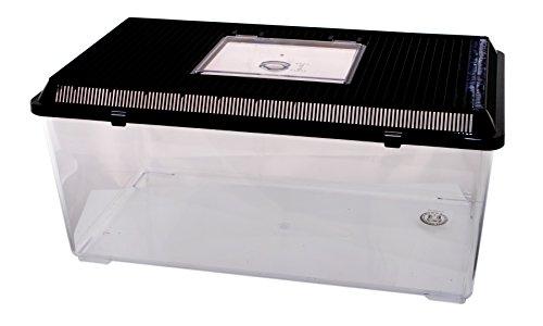 PET-PLAZA Kunststoffbox - Faunarium Jumbo Flach 56x31x26cm