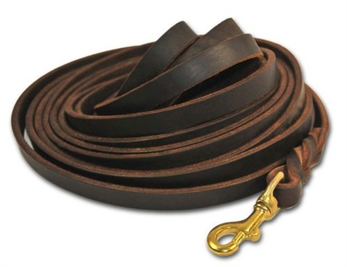 Dean and Tyler Braided Track Dog Leash, Brown 13.5-Feet by 1/2-Inch Width With Solid Brass Hardware. by Dean & Tyler