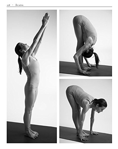 The Art of Vinyasa: Awakening Body and Mind through the ...