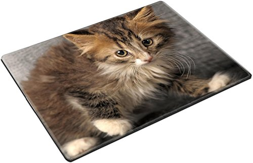 MSD Place Mat Non-Slip Natural Rubber Desk Pads design 11621520 Siberian kitten
