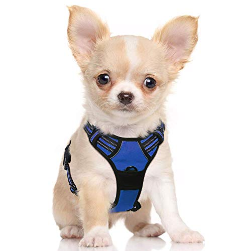 Rabbitgoo Dog Harness No-Pull Pet Harness Adjustable Reflective Oxford Material Vest for Dogs (Blue, S)