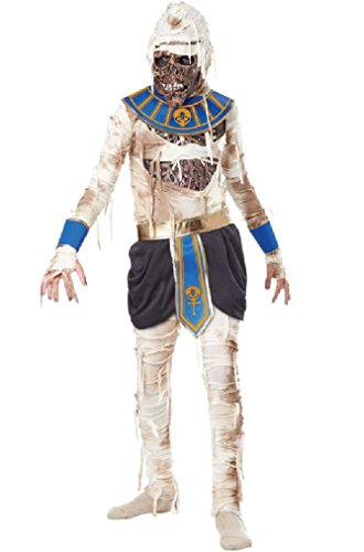 [Fancy Egyptian Mummy Pharaoh's Revenge King Tut Child Costume] (Childs Pharaohs Revenge Costumes)