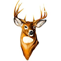 Deer Whitetail Hunting Decal 12x6.5 Inches