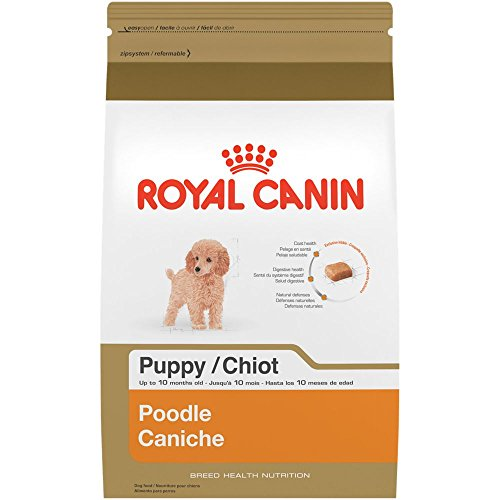 ROYAL CANIN BREED HEALTH NUTRITION Poodle Puppy dry dog food, 2.5-Pound