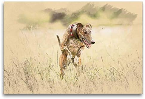 Calvendo Galgo español - Perro Cortavientos español en Movimiento, 120 x 80 cm